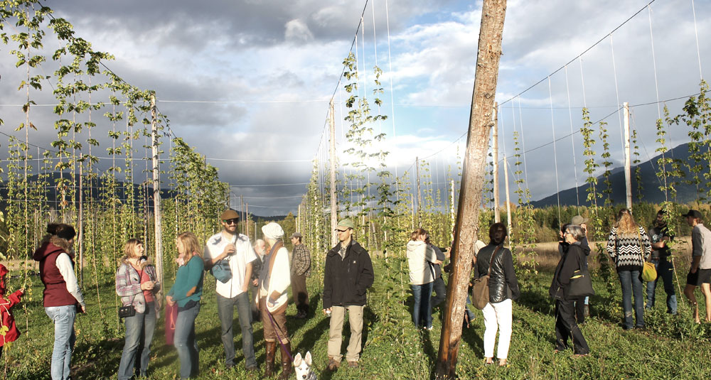 happy people in a field surrounded by hops
